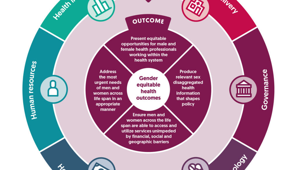 Gender policy in health systems diagram